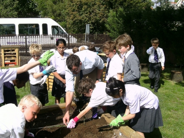 Year 3 get their hands dirty