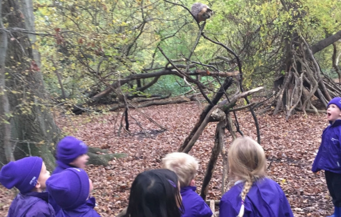 1P return to the woods with Forest School