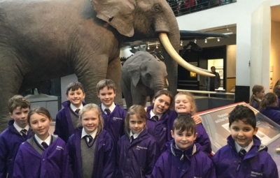 Years 3 and 4 enjoy a trip to the Natural History Museum