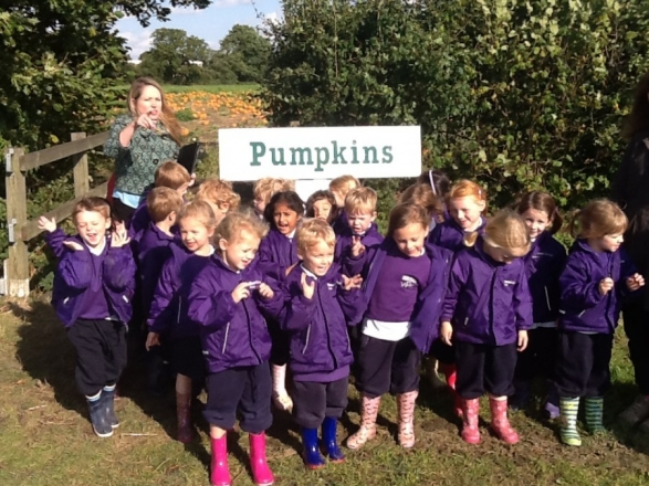 A visit to Garson Farm for Reception