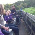 Reception pick perfect pumpkins at Garsons Farm.