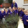 Year 1's School Grounds Nature Walk
