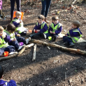 Kindergarten at Forest School