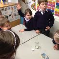 Scientists at work in Reception!