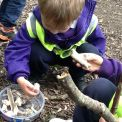 Kindergarten at Forest School: 28 April