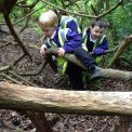 Kindergarten at Forest School: 19 May