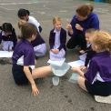 Investigating capacity with friends