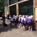 Year 2 at the Zoo