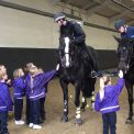 Horsin' around with Year 2