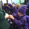 Year 2 visit Birdworld