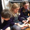 Habitats workshop in Key Stage 1