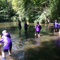 Year 5 take a trip to the River Mole
