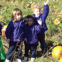 Reception Pumpkin Picking at Garsons Farm