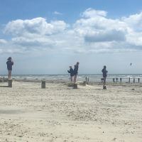 Year 6 visit West Wittering