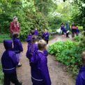 Year 1 visit RHS Garden Wisley