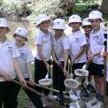 Year 2 Pond Dipping at Painshill Park