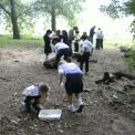 Year 4 visit Painshill Park