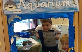 Kindergarten & Reception Explore Life Under the Sea